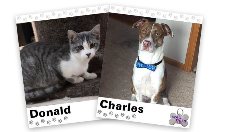 WAGNER TAILS: Donald and Charles