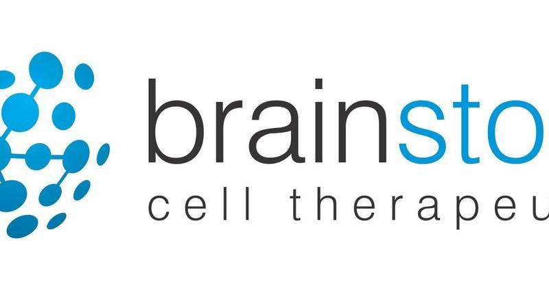 BrainStorm Logo (PRNewsfoto/BrainStorm)