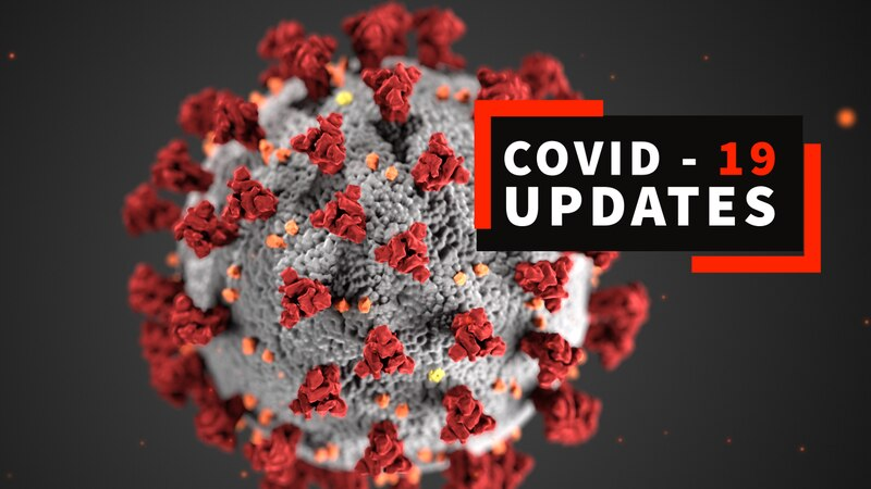 CDC image of the COVID-19 virus.