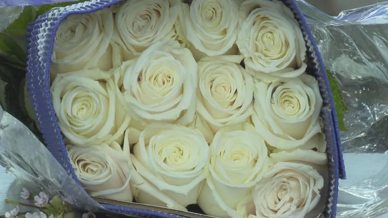White roses from Krueger Wholesale Florist Inc.