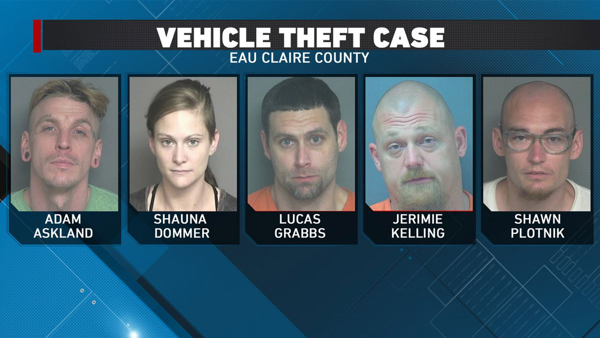 Vehicle theft case