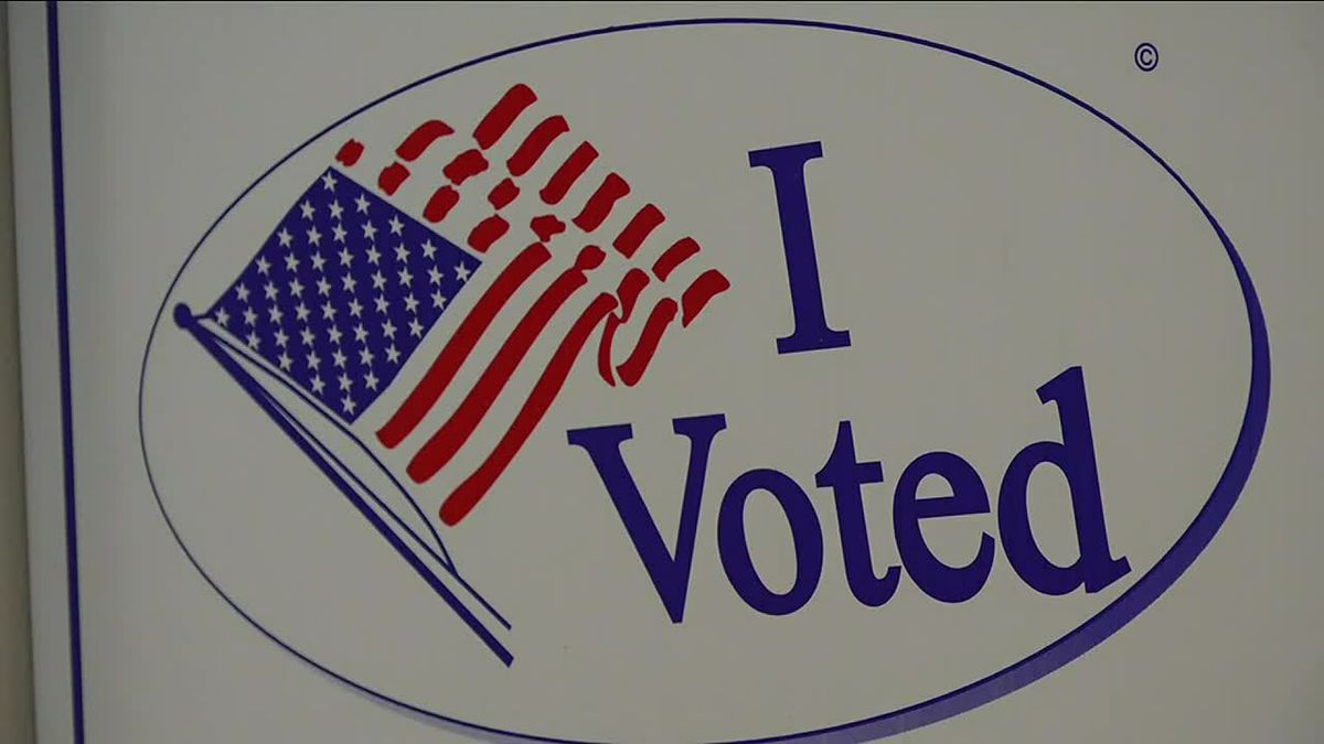 Dozens of school referendums were decided upon by voters in Tuesday's Spring Election in...