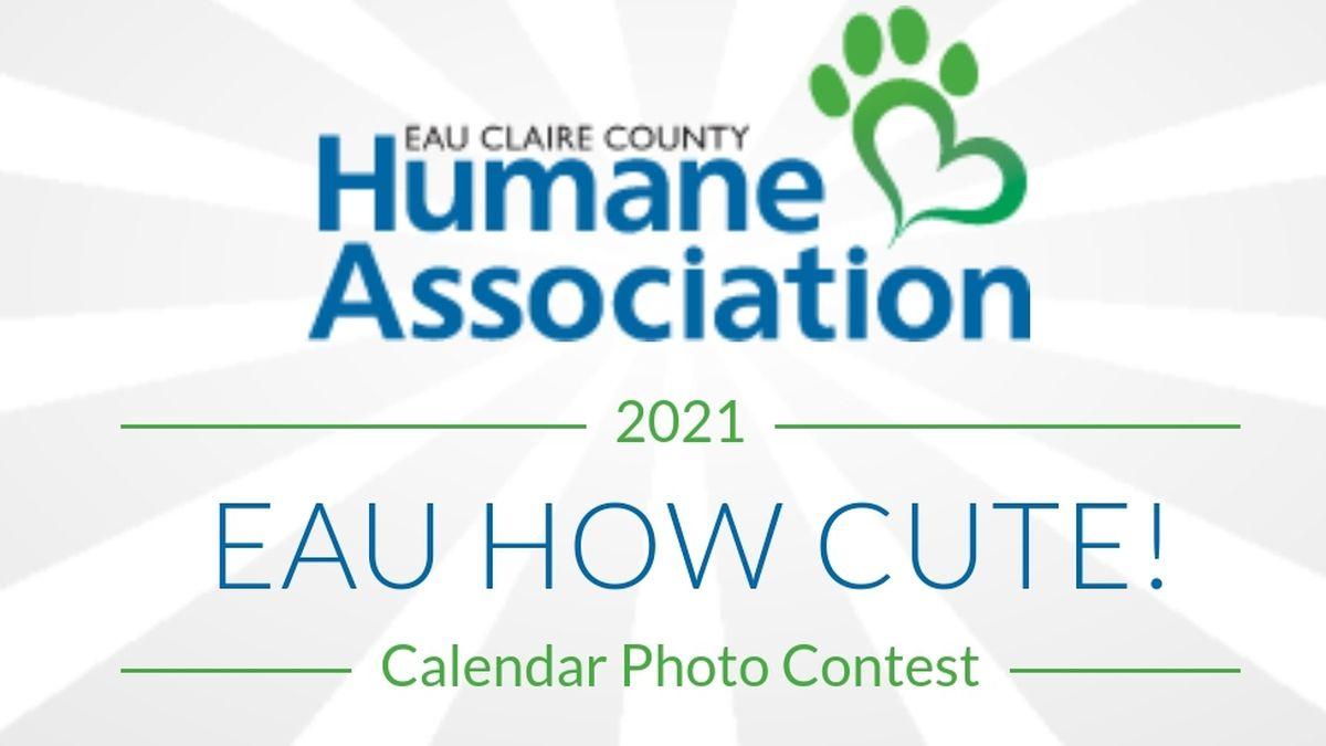 ECCHA pet photo calendar contest