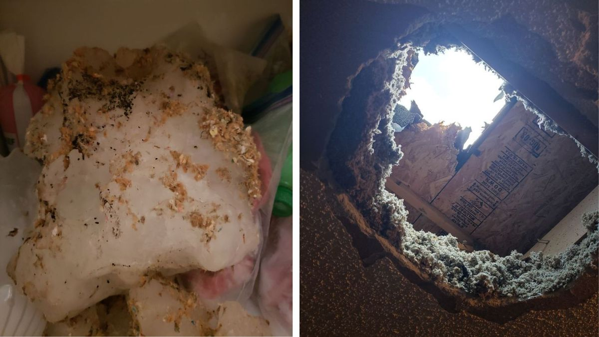 A large hail stone went through the roof of a home near Elk Mound, Wis. on Tuesday, May 25,...
