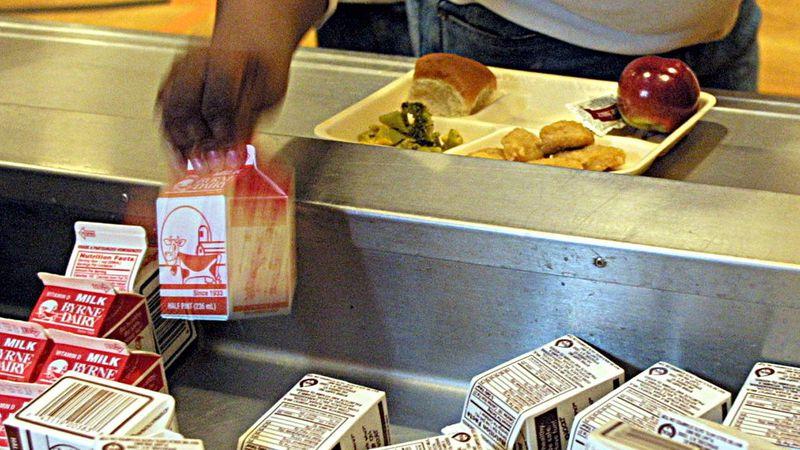 Student picks up milk carton in school cafeteria, photo