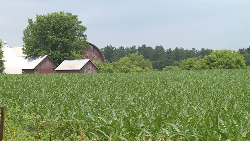 Farmers in western Wisconsin suffer from drought.