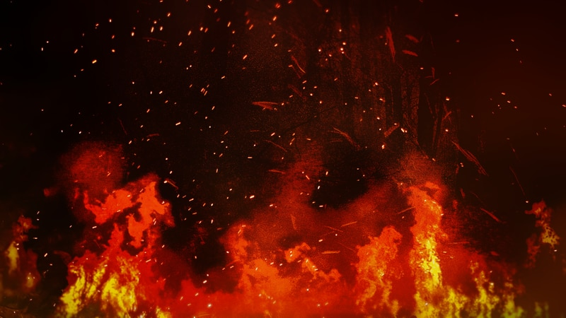 Rice County authorities suspect two fires from earlier this week are the result of arson.