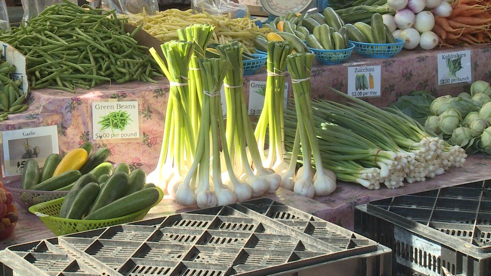 If you've been to the Eau Claire Downtown Farmers Market this season, you might have noticed some new changes due to the COVID-19 pandemic.