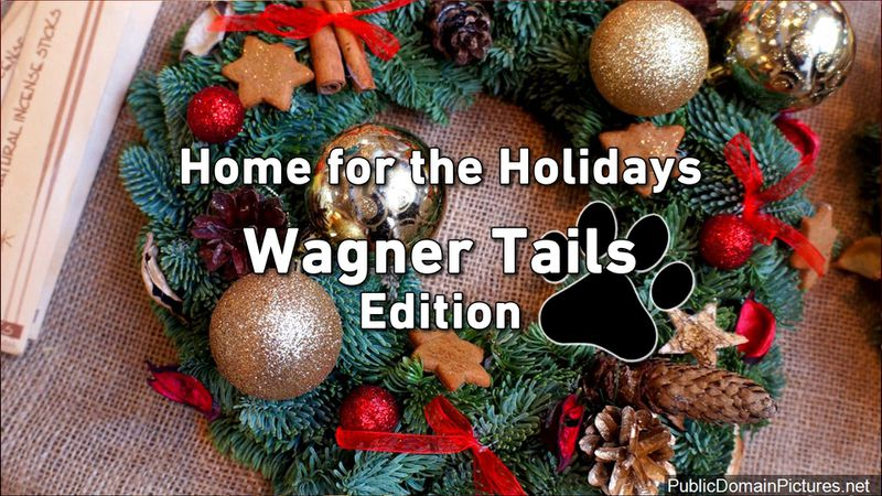 WAGNER TAILS: Home for the Holidays Edition