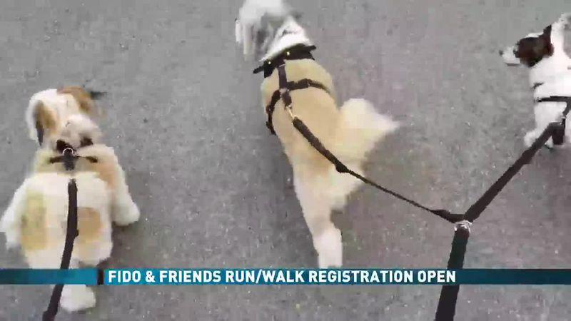 Fido & Friends Run/Walk