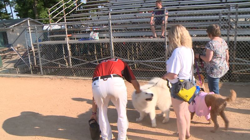 Fans can start bringing dogs to Sunday Eau Claire Express games at Carson Park beginning July 18.