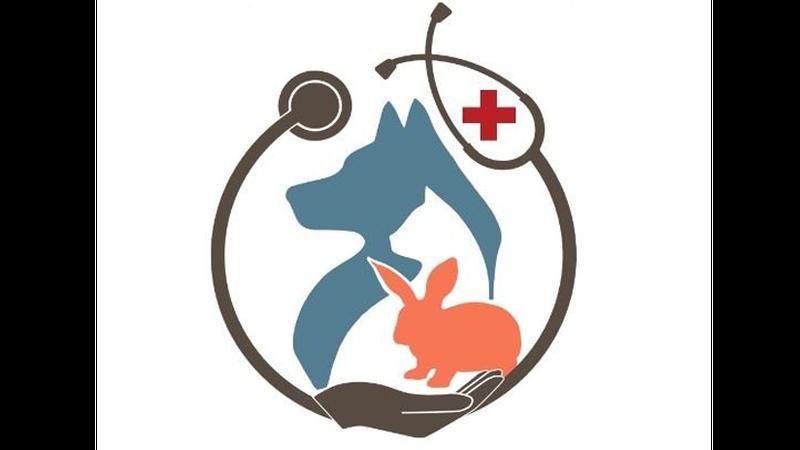 Lake Wissota Animal Hospital