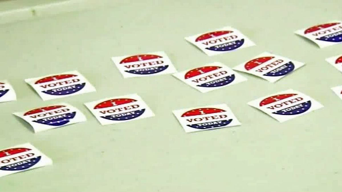 Here's a voter guide on what to bring to the polls, where to find your polling place, and how...