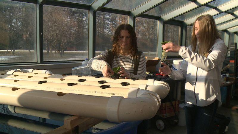Augusta High School Freshmen Camryn Kirkham and Audra Sandberg, demonstrate how the aquaculture...