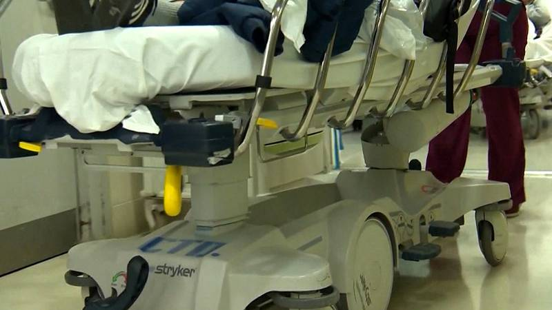 FILE — Minnesota reached 757 patients hospitalized due to COVID-19 on Friday — the highest...